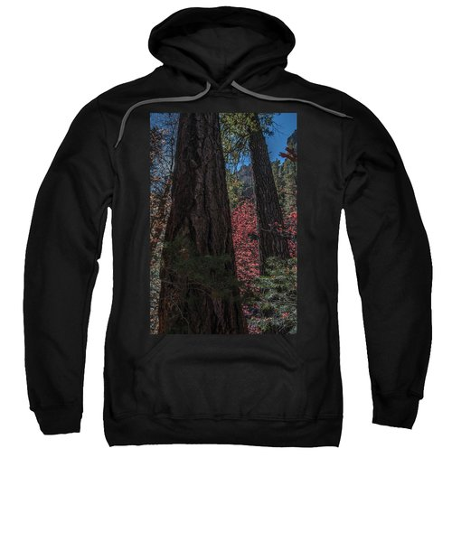West Fork Perspective Sweatshirt