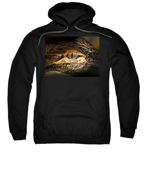Feisty Gator Sweatshirt