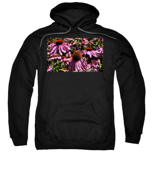 Field Of Echinaceas Sweatshirt