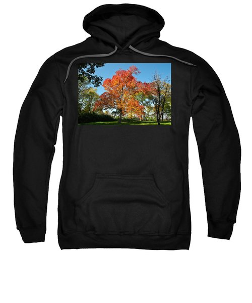 Fiery Fall Sweatshirt