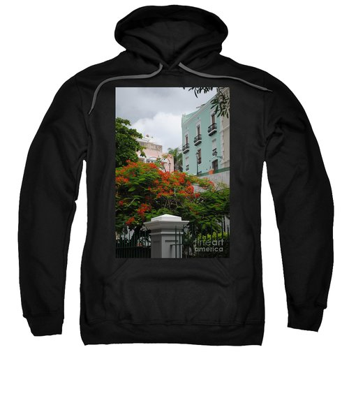 Flamboyan In Park Sweatshirt