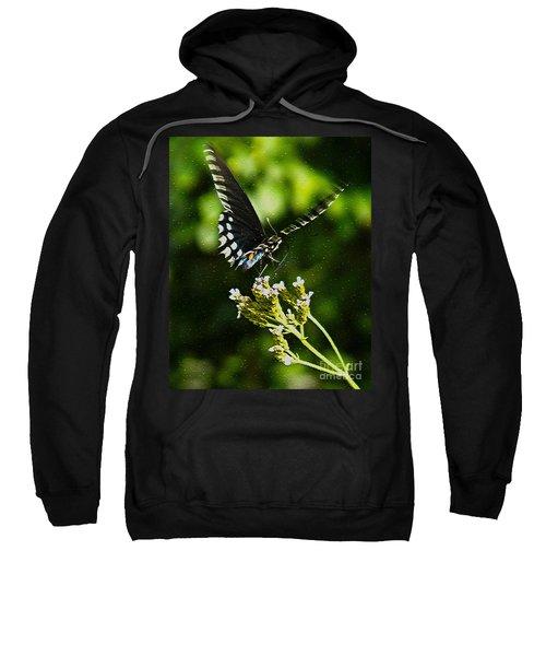 Flattering Flutter Sweatshirt