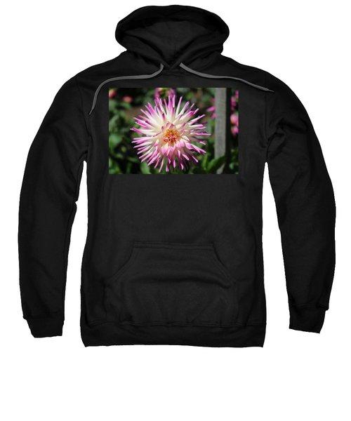 Floral Beauty 3  Sweatshirt