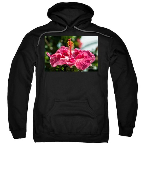 Flower Closeup Sweatshirt