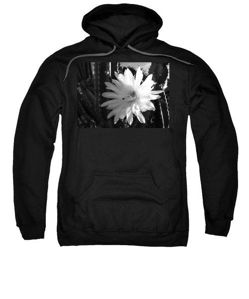 Flowering Cactus 1 Bw Sweatshirt