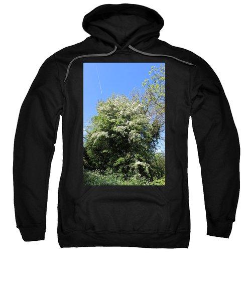 Flowering Tree Sweatshirt