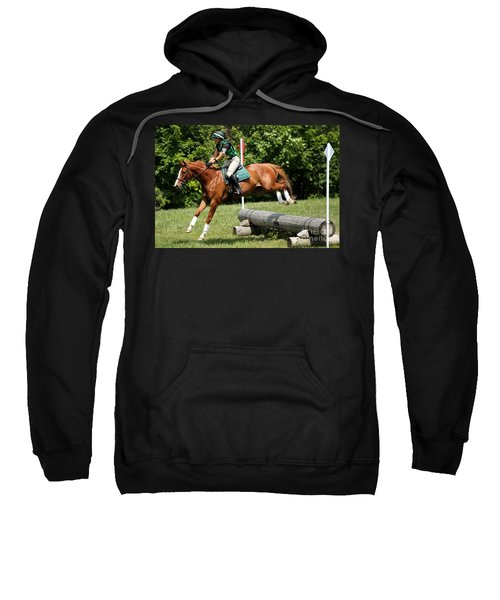 Flying Chestnut Sweatshirt