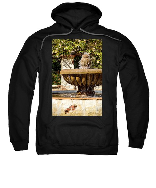 Fountain Of Beauty Sweatshirt by Peggy Hughes