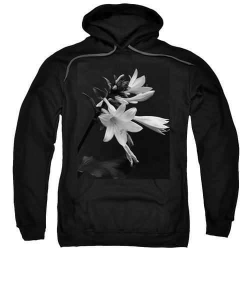 Fragrant Plantain Lily Sweatshirt