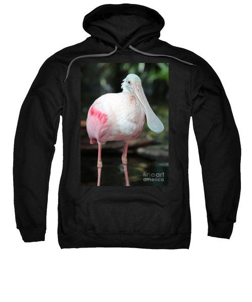 Friendly Spoonbill Sweatshirt