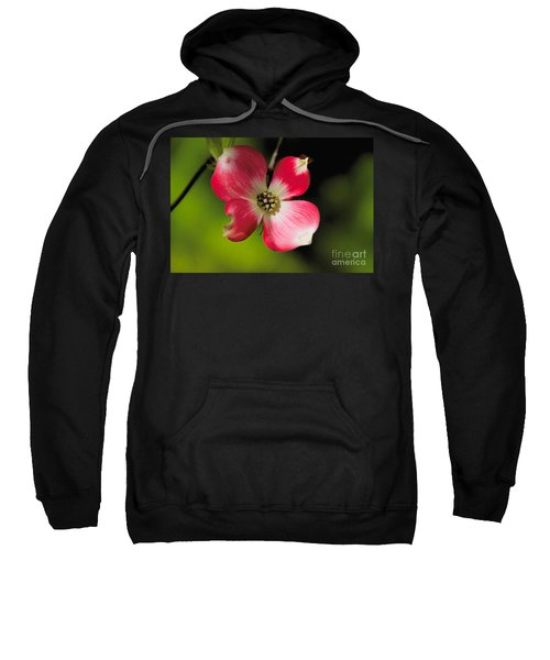 Fruit Tree Flower Sweatshirt