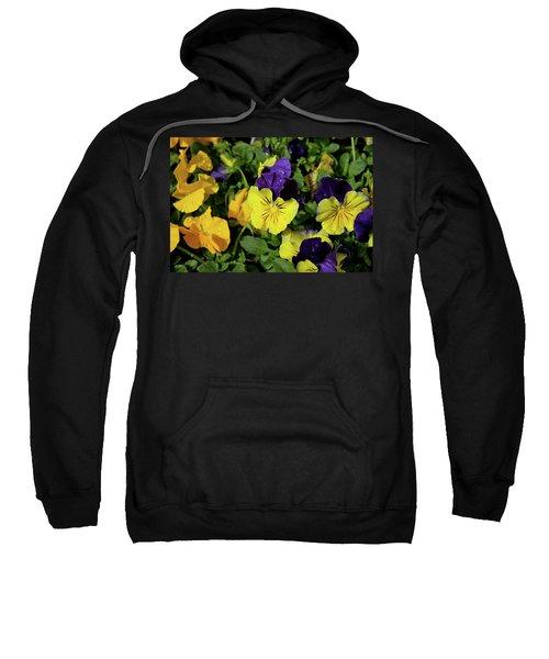 Giant Garden Pansies Sweatshirt