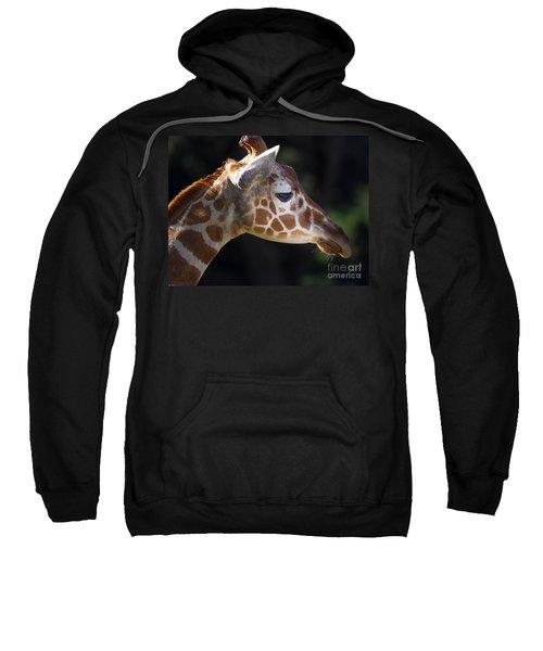 Giraffe 7d8858 Sweatshirt