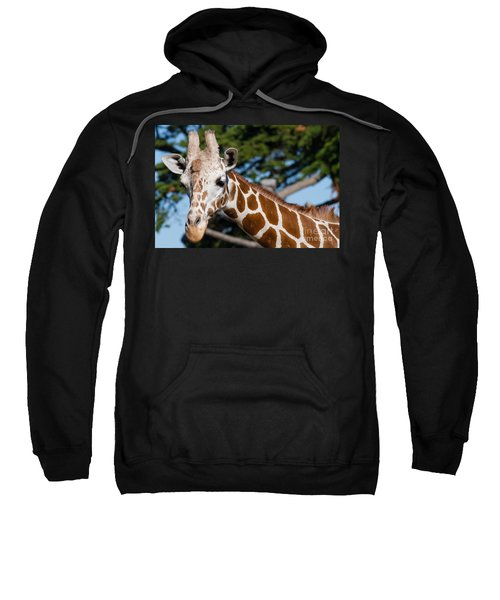 Giraffe 7d8893 Sweatshirt