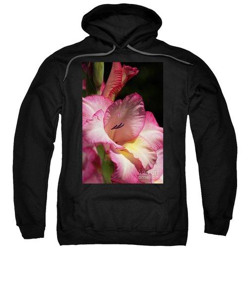 Gladiolus In Pink Sweatshirt