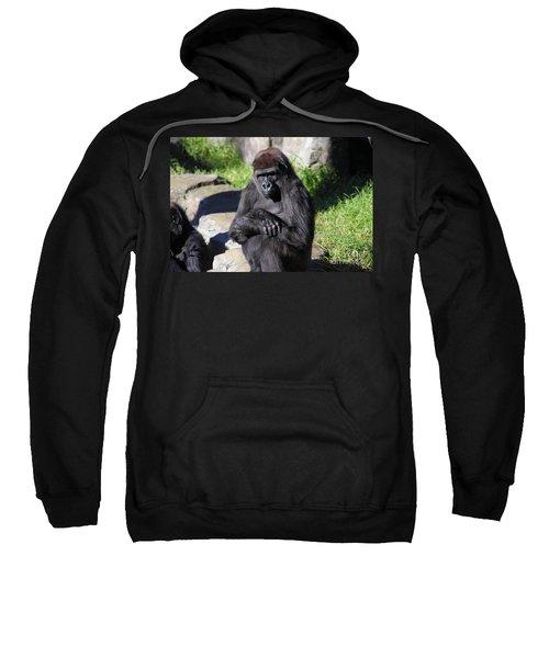 Gorilla 5d27052 Sweatshirt