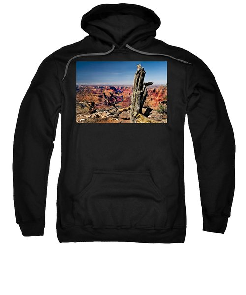 Grand Canyon And Old Tree Sweatshirt