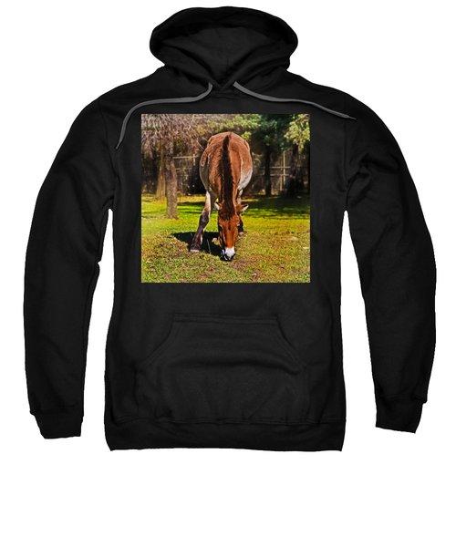 Grazing With An Attitude Sweatshirt