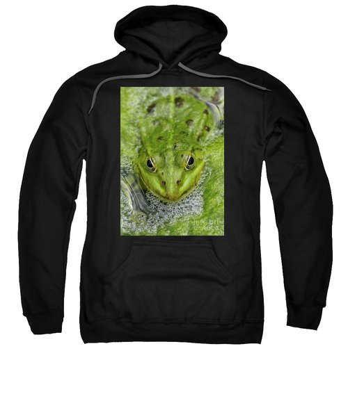 Green Frog Sweatshirt by Matthias Hauser