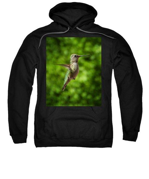 Green Hummingbird Sweatshirt