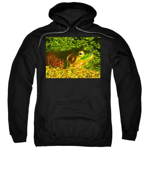 Happy As A Frog In A Pond Sweatshirt