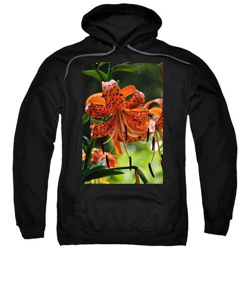 Heirloom Beauty Sweatshirt
