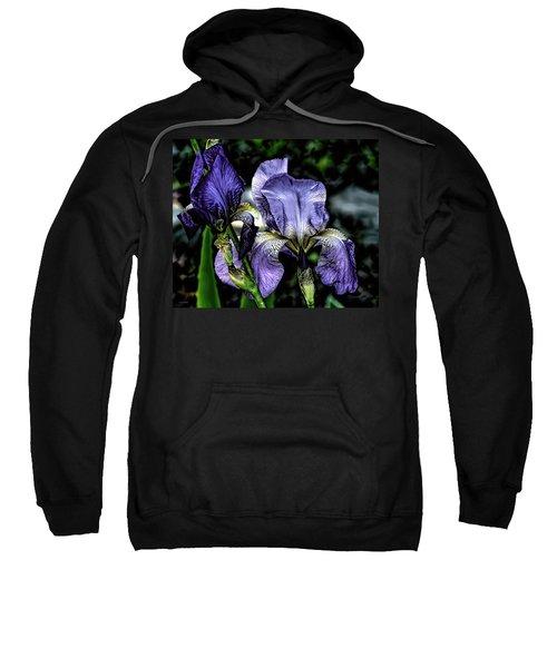 Heirloom Purple Iris Blooms Sweatshirt