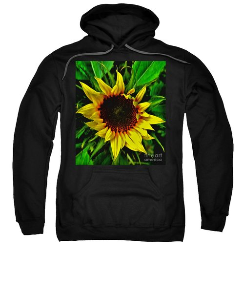 Helianthus Annus - Sunnydays Sweatshirt