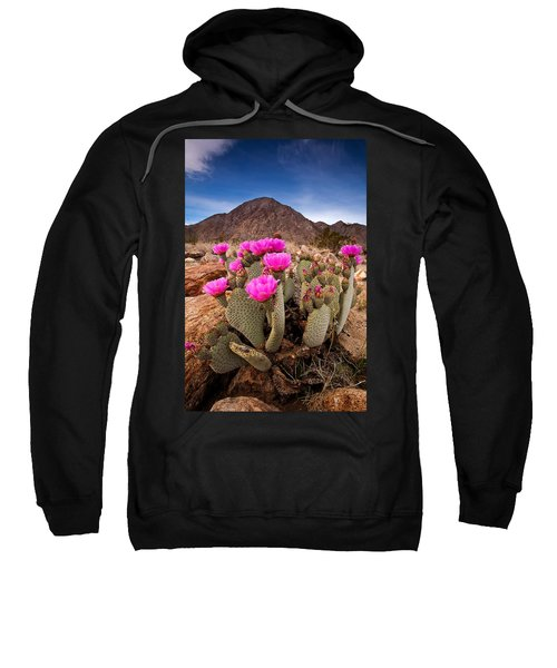 Henderson Canyon Beavertail Sweatshirt