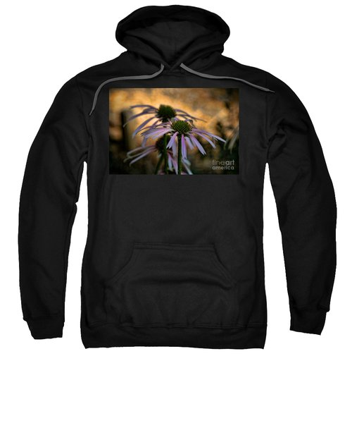Hiding In The Shadows Sweatshirt by Peggy Hughes