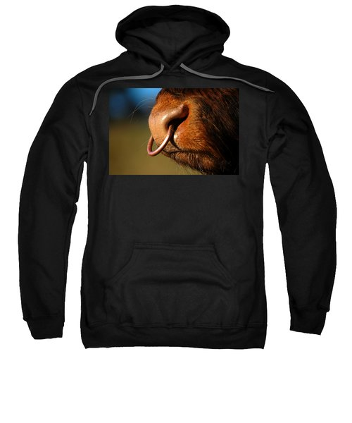Highland Bull Sweatshirt
