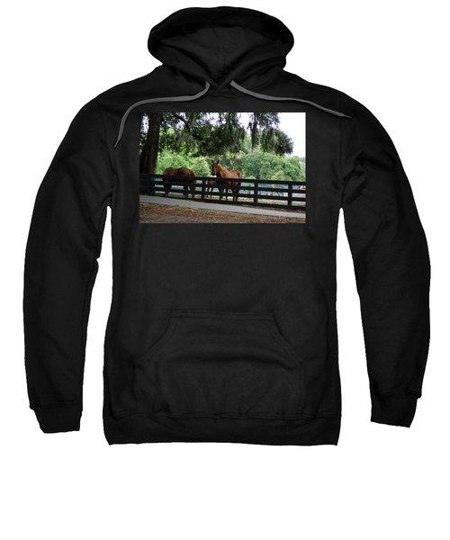 Hilton Head Island Beauty Sweatshirt