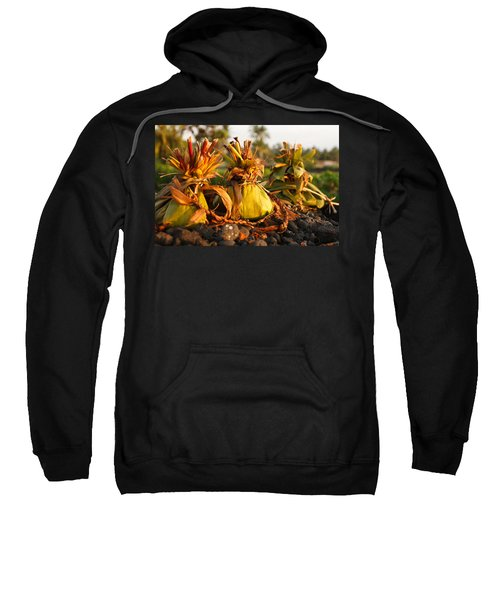 Hookupu At Sunset Sweatshirt