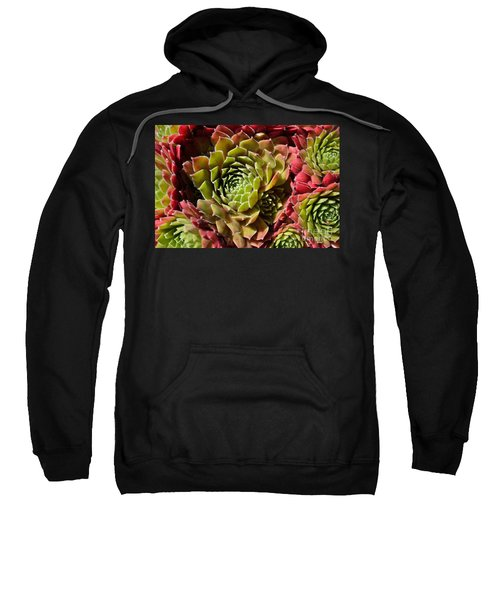 Houseleek Group Sweatshirt