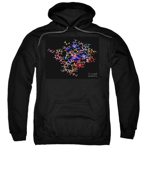 Human Insulin Monomer Sweatshirt