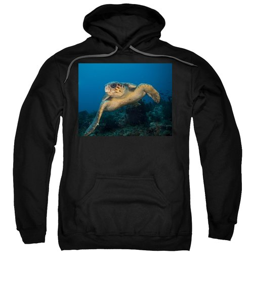 I Am Big Sweatshirt