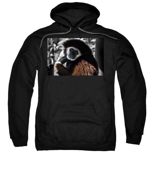 I Think I Could Like You Sweatshirt by Miroslava Jurcik