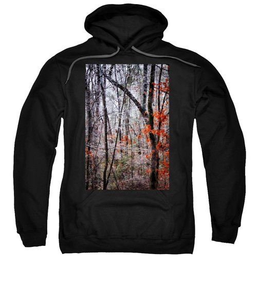 Ice Trees Sweatshirt