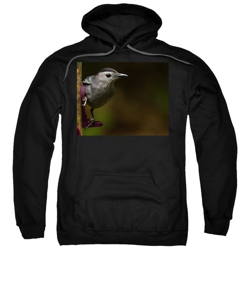 I'm A Cat Bird And I Sound Like One Too Sweatshirt