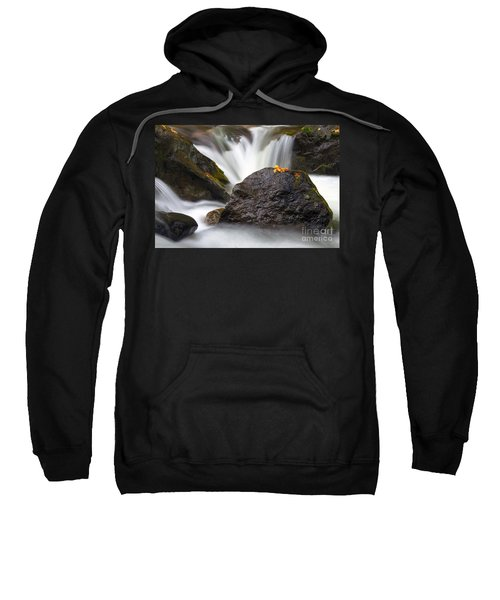 In The Center Of  It All Sweatshirt