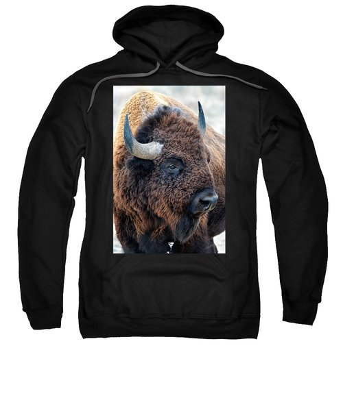 Bison The Mighty Beast Bison Das Machtige Tier North American Wildlife By Olena Art Sweatshirt
