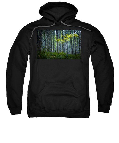 In The Woods Sweatshirt