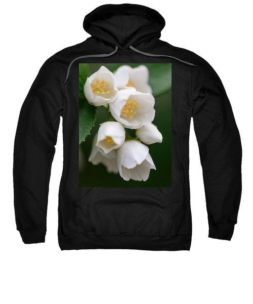 Jasmin Flowers Sweatshirt
