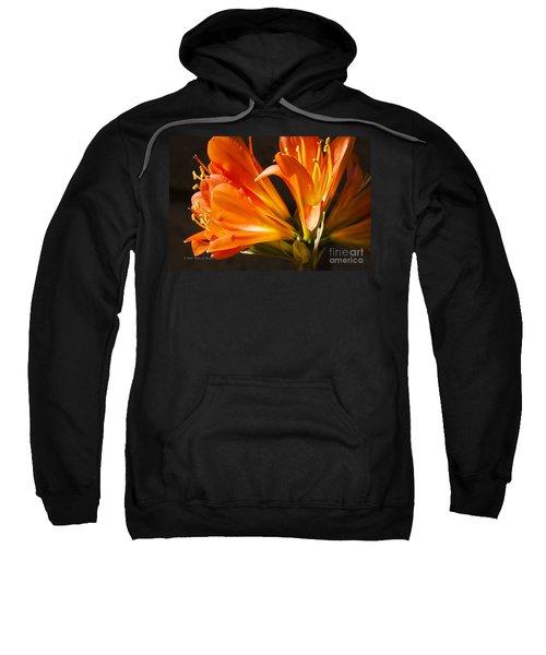 Kaffir Lily Glow Sweatshirt