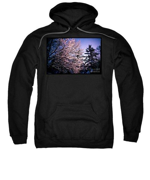 Last Peek Of Winter Sun Sweatshirt