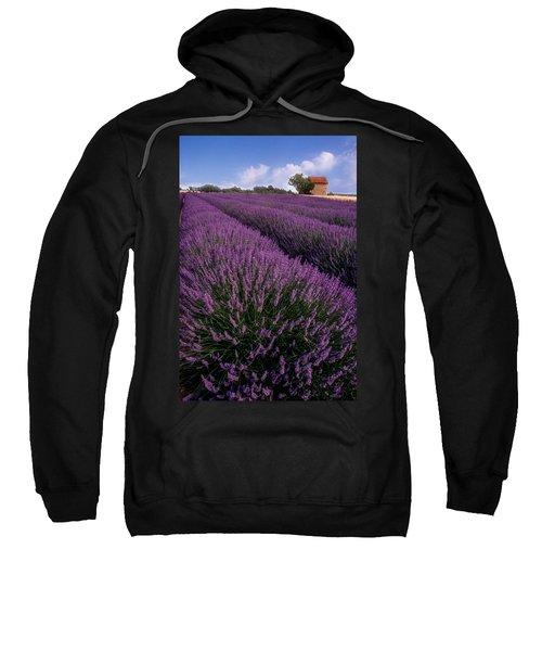 Lavender In Provence Sweatshirt