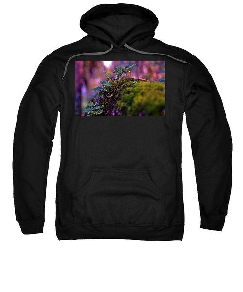 Leaves On A Log Sweatshirt by Bellesouth Studio