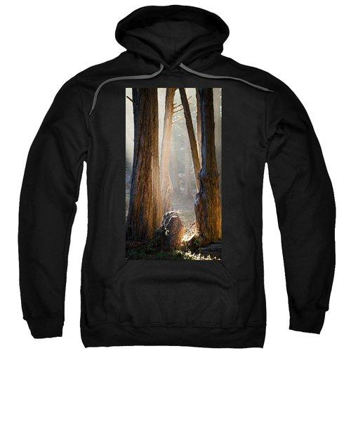 Light Sweatshirt