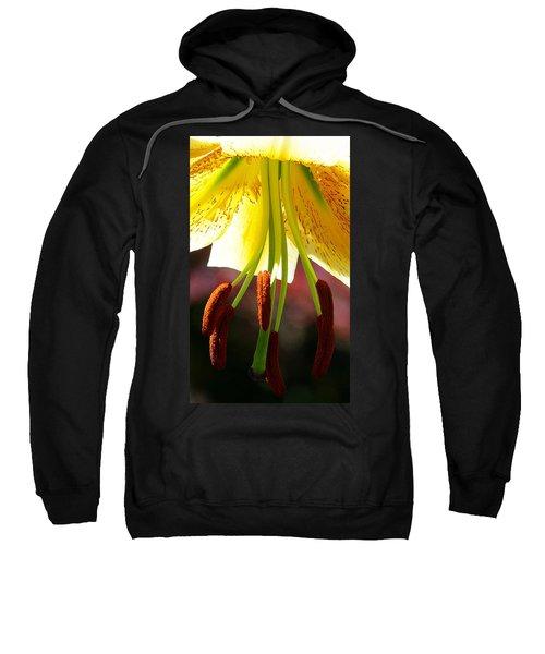 Lily Chandelier Sweatshirt