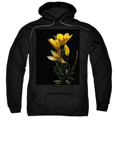 Lily Light Sweatshirt